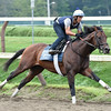 Bakken at Saratoga 8/24/2014.<br /> Coglianese Photos/Susie Raisher
