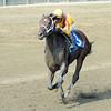 Jess's Dream wins at Saratoga Aug. 24, 2015.<br /> Coglianese Photos