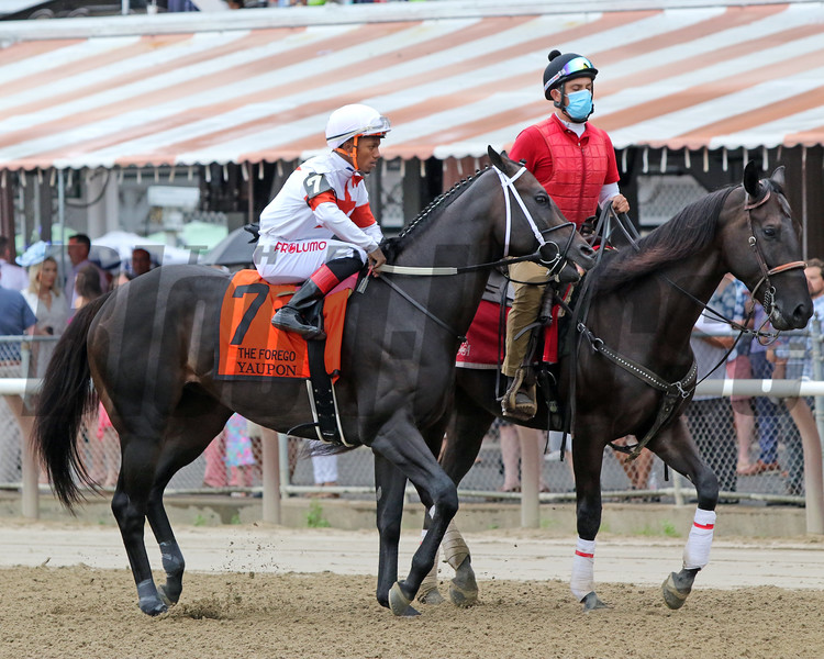 Yaupon with Ricardo Santana Jr. in the post parade for the 42nd Running of The Forego (GI) at Saratoga on August 28, 2021. Photo By: Chad B. Harmon