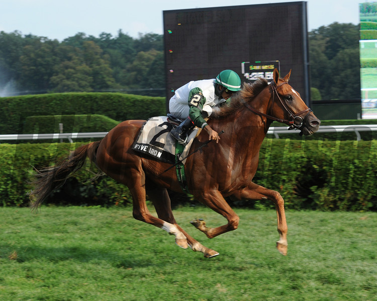 Fred Allor's homebred Five Iron scored a third straight front-running victory Sept. 1, this time nailing down the first graded stakes win of his career in the $150,000 Saranac Stakes (gr. III) at Saratoga Race Course<br /> Photo: Coglianese Photos