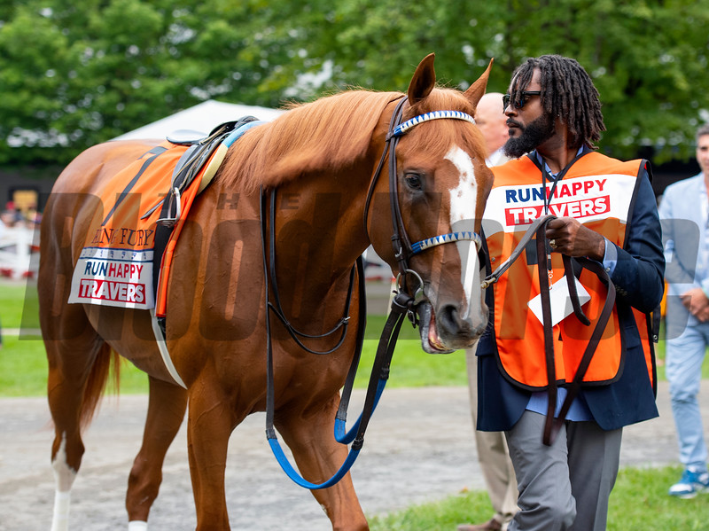 King Fury in the paddock before the Runhappy Travers Stakes (G1) at Saratoga Race Course in Saratoga Springs, N.Y., on Aug. 28, 2021.
