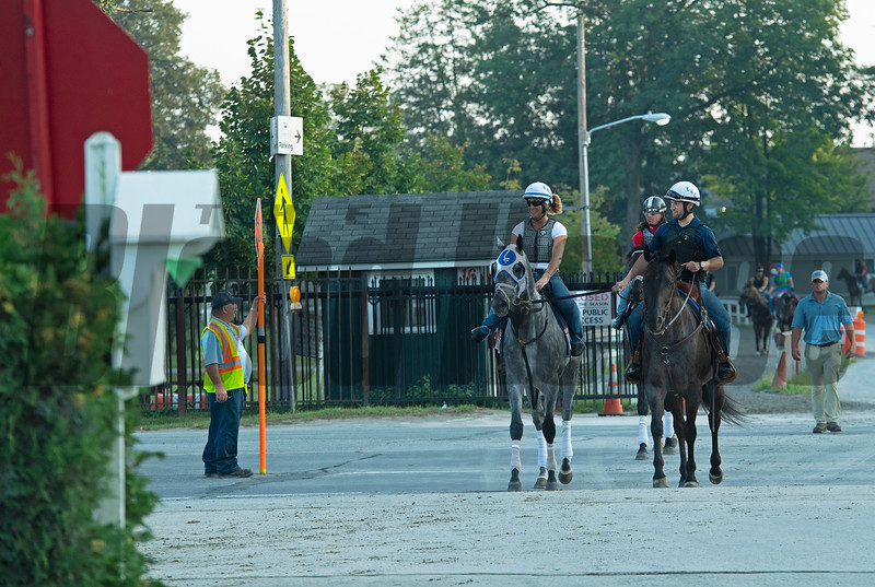 Essential Quality wearing blinkers while he schools at the gate. <br /> Horses in training during Travers week in Saratoga on Aug. 26, 2021.