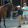 Mike Ryan looking at yearlings<br /> Saratoga training and sales scenes at Saratoga Oklahoma track and Fasig-Tipton in Saratoga Springs, N.Y. on Aug. 6, 2021.