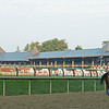 Baffert horse training at Saratoga<br /> Horses in training during Travers week in Saratoga on Aug. 26, 2021.