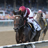 Royal Delta wins the Personal Ensign Invitational Handicap (gr. 1)<br /> Jockey: Mike Smith<br /> SARATOGA, Saratoga Springs, NY<br /> Purse: $600,000<br /> Date: August 25, 2013<br /> Class: Grade I<br /> TV: HRTV/TVG<br /> Age: 3YO&UP Fillies and Mares<br /> Race: 10<br /> Distance: 1 1/8 miles<br /> Photo by: Adam Coglianese/NYRA