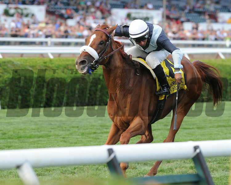 Main Sequence wins the Sword Dancer Stakes 8/17/2014.<br /> Coglianese Photos/Lauren King