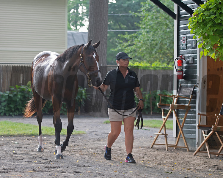 Hip 184 filly by War Front out of Sassifaction at Bedouin Bloodstock<br /> Sales scenes at Fasig-Tipton in Saratoga Springs, N.Y. on Aug. 10, 2021.