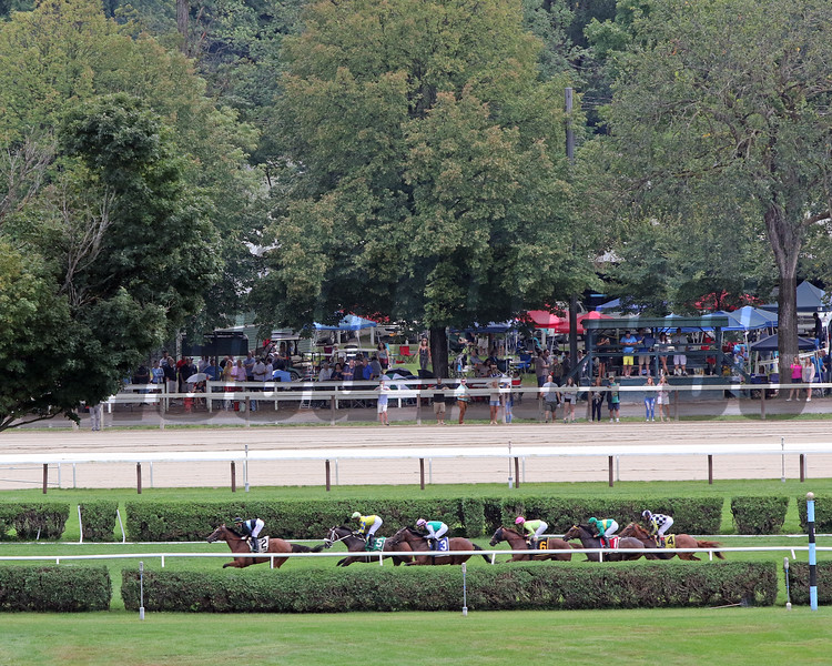 The field of the 33rd Running of The Ballston Spa on the backstretch at Saratoga on August 28, 2021. Photo By: Chad B. Harmon