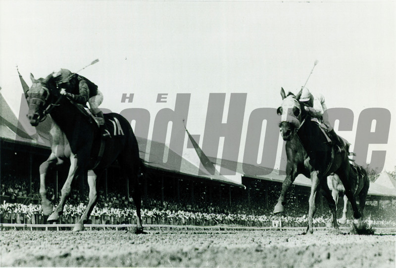 Buckpasser at the Travers Stakes in 1966 at Saratoga.<br /> Photo by: Coglianese Photos