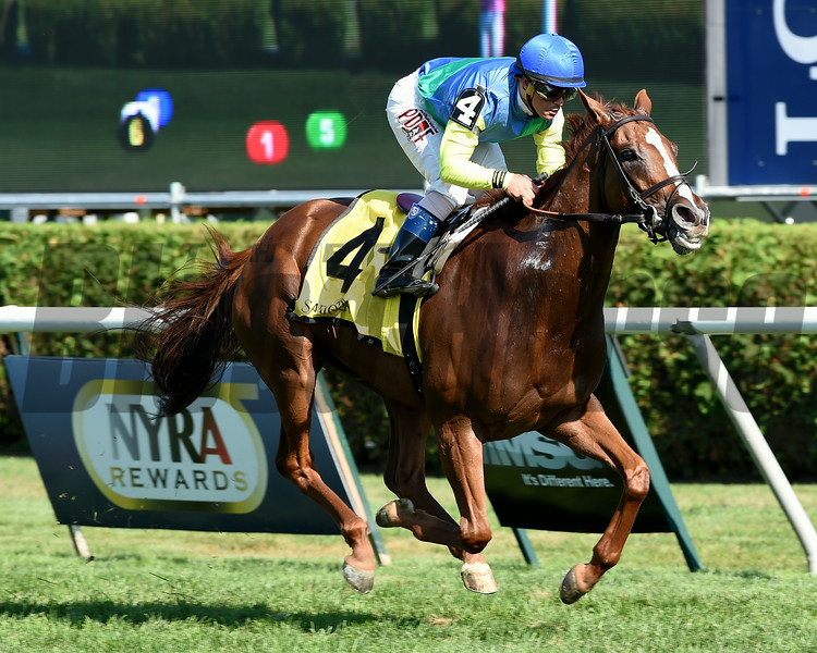 Dayatthespa wins the Yadda Stakes at Saratoga 8/24/2014.<br /> Coglianese Photos