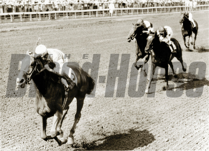 Shuvee takes the 1969 Alabama Stakes at Saratoga Race Course in New York.<br /> Photo by: Bob Coglianese