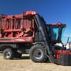 Case IH 2013c 625 cotton picker ft rt