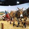 McCormick Deering Type D horse drawn reaper-binder 02