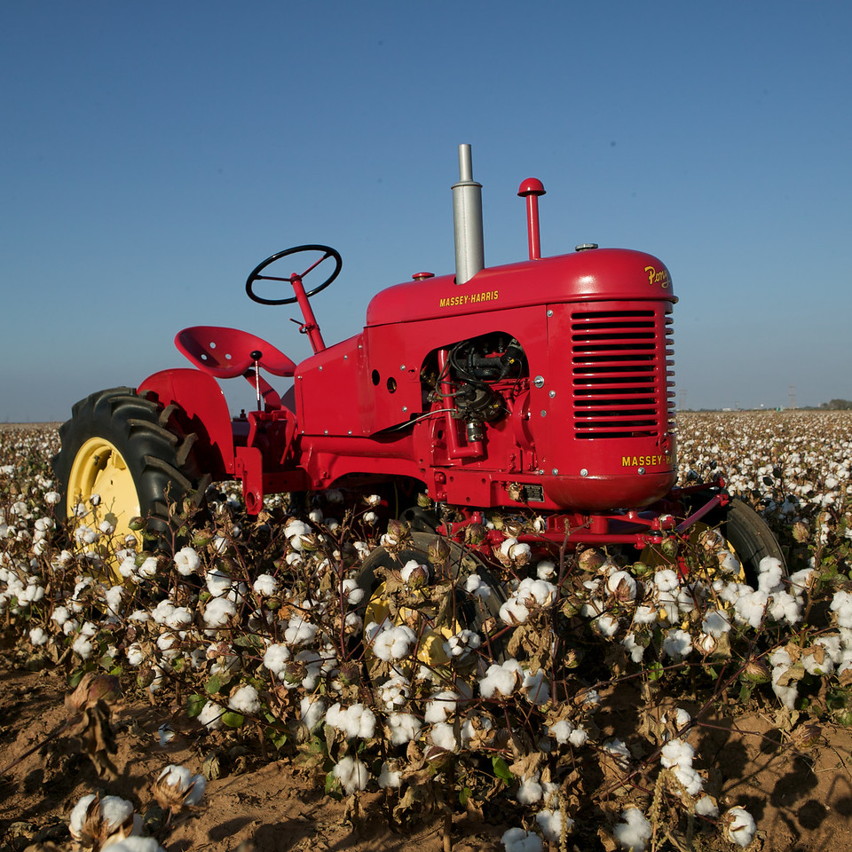 Massey-Harris Pony photographed in cotton field on University Avenue in Lubbok, Texas. Owned by Ben Colburn from Levelland, Texas.