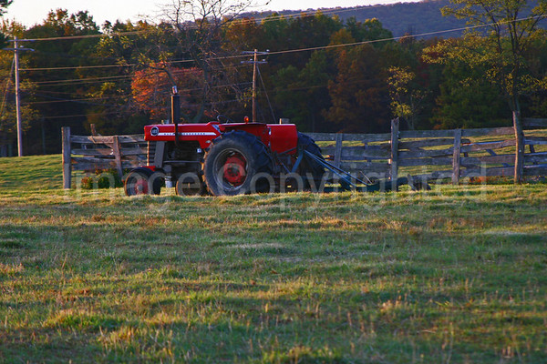 Tractor - 11/5/08