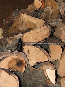 Nature 081119 TracySaundersArt Yes (10)