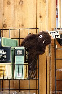 Trader Joe's Portland Sasquatch Mascot