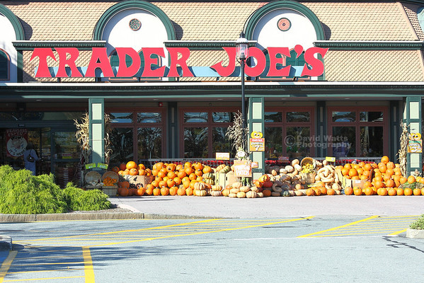 Trader Joe's Store Hyannis, MA