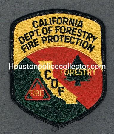 CALIFORNIA DEPT OF FORESTRY 1