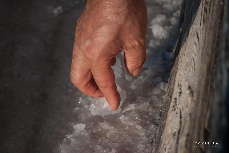 """Flor de sal A Flor de Sal é uma finíssima película de cristais de sal que se forma na superfície da água das salinas, e que é cuidadosamente recolhida com um instrumento especial, que nunca toca o fundo. A Flor de Sal não sofre qualquer processamento posterior, seca ao sol e é depois embalada, mantendo o sabor e a humidade do mar. A """"fina flor"""" do sal marinho tradicional é composta por pequenos cristais quebradiços, e a sua brancura deve-se ao cuidado com que é feita a recolha diária, nunca tocando no fundo da salina."""