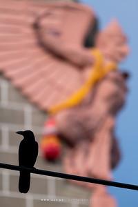 Garuda Holding Siamese Bugle, Grand Postal Building