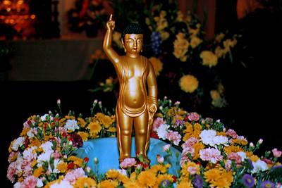 Image of the Baby Buddha (Los Angeles, CA)