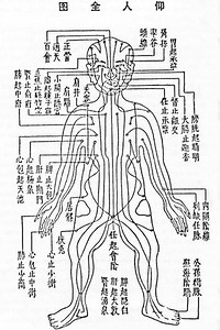 Traditional Chinese Medical Chart Showing Nodal Points and Pathways of Qi