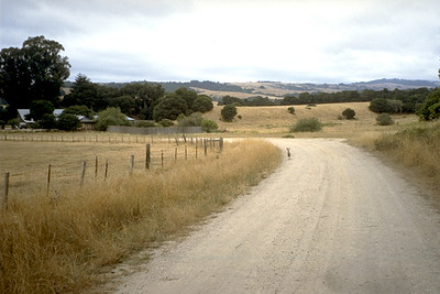 Road Leading to the Vedanta Ashram Retreat (California)
