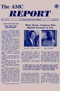 AMC Report (1991)
