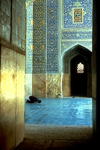 View of the Prayer Hall (Shiraz, Iran)
