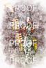 Pregame-Osceola-7253-8x12-texture