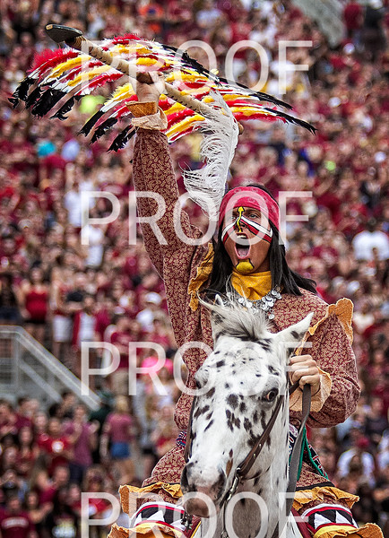 Chief Osceola celebrates the first of eleven TD's on the day. The Seminoles set a school record for most points scored as they dominated Idaho 80-14 in the last home game of the season.