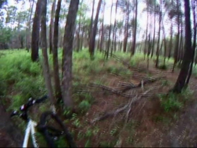 """I went westward downhill from the north terminus of Tall Pine Shortcut to the end of the reroute around the pond. Then shot this helmetcam video of the 540m return trip back uphill to the north bench. I'm a bit confused, but I think this segment is referred to as """"23A and 24F"""" in Valerie's trail assessment. See map in appendix C, p.iii."""