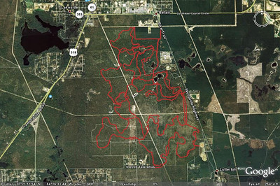 A mashup of some current/official and abandoned/unofficial trails in the Munson/TZ area.