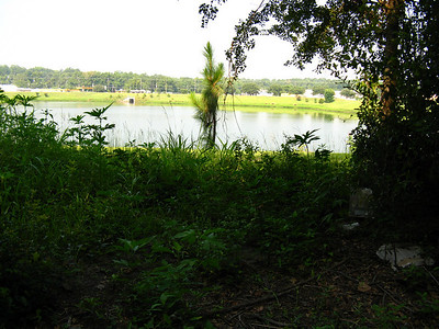 A peek at Lake Elberta Park from the east side.
