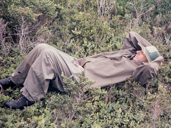 N21  sleeping joe 1963