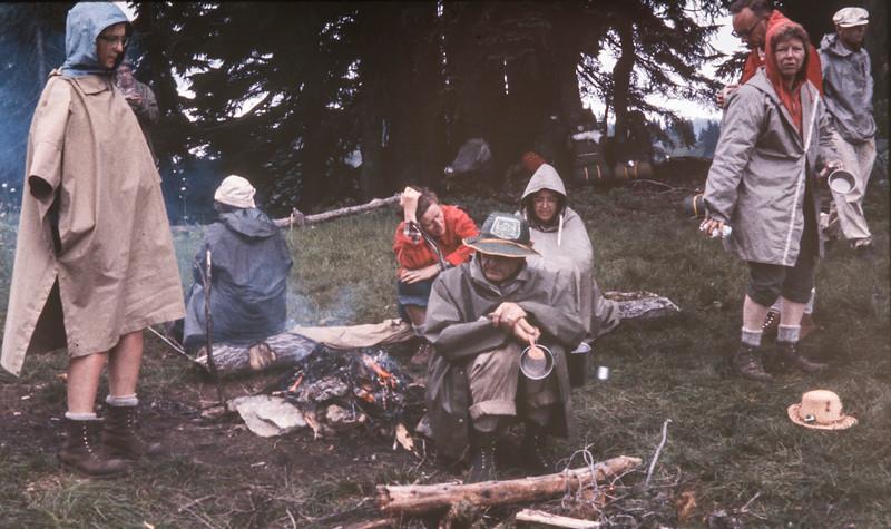 N29 Meander meadow 1963