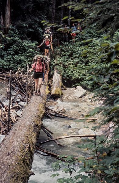 N3 Milk creek log 1963