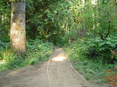 Aug 2, 2009 - Waddell Creek