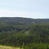 Looking across the hillside of the Wilson Creek Trail (1387). We are on our last leg up to Ken Wilcox Horse Camp.
