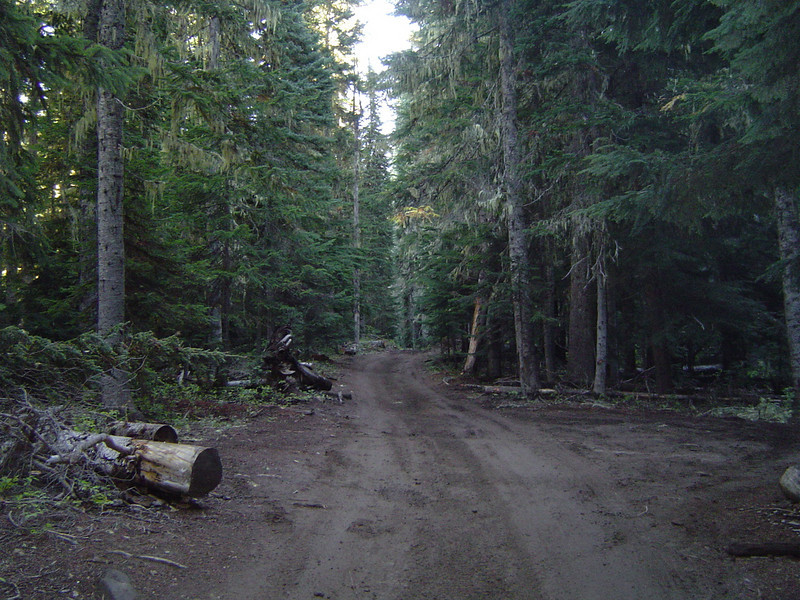 After staging at the top of FR 70 we decided to start off the morning on the Naches Jeep Trail.