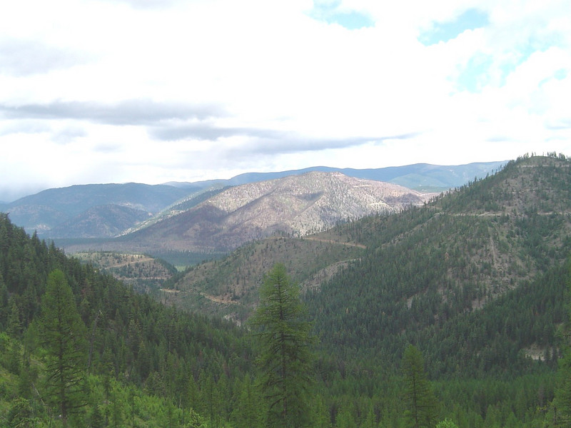 The view looking toward Fish Creek from Williams Pass. I will be down there shortly.