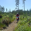 Super Sylvia on her CRF 150 on the Randy's H20 trail.
