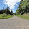 After lunch I took Gooseberry Flats Trail (1227) up to FR 3130 and followed the roads up to Buck Meadows.