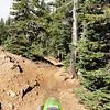 On the Manastash Ridge Trail (1388) waiting for Rob.