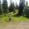 We staged at the end of 5 Mile Rd. and the start of the Tronsen Ridge Trail (1204).