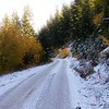 Patches of snow turned into just snow. Traction was still good, but wondered if a trail ride was going to be feasible.