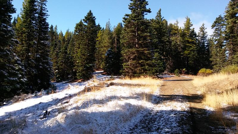 Staged at the bottom FR 9738 off of Highway 97. About 5000 ft started seeing patches of snow.
