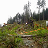I was OK with the new clearcuts, but this sucks. They have closed off the Twisted Tree trail.