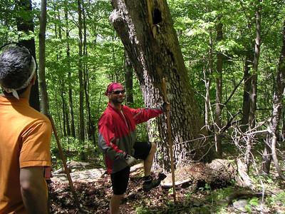 Brady's Run Trail Maintenance - 20050515